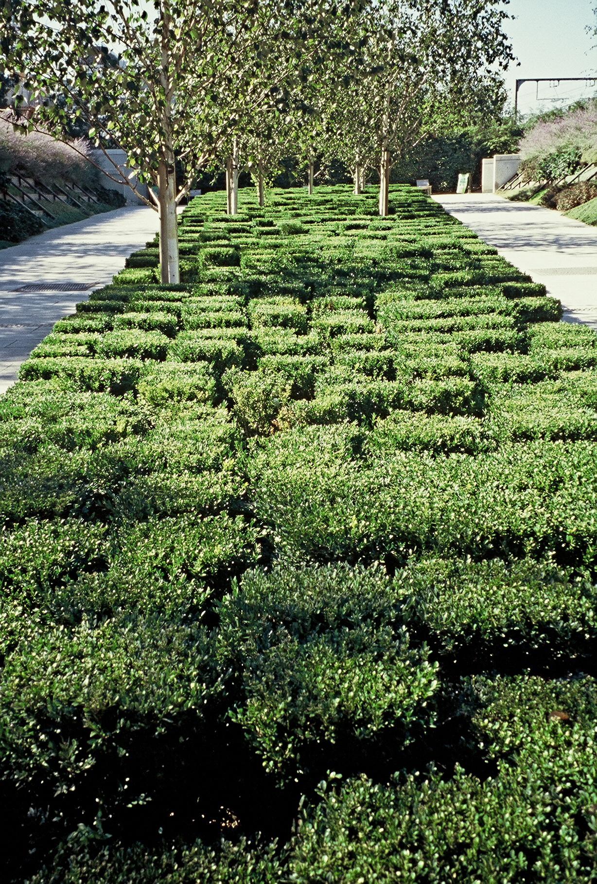 paris parc citro n photo alice joyce alice 39 s garden travel buzz. Black Bedroom Furniture Sets. Home Design Ideas