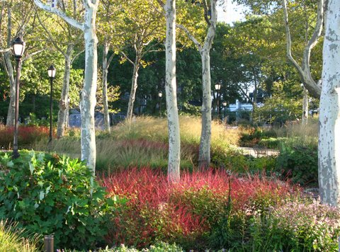 Battery Gardens New York Piet Oudolf Design Alices Garden