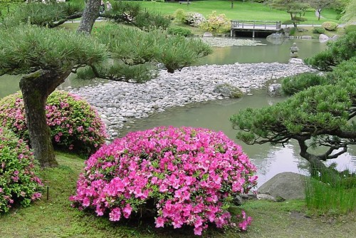 Share for Easy japanese garden