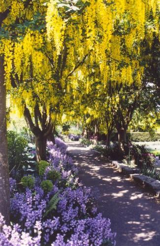 vandusen botanical garden vancouver british columbia alice 39 s garden travel buzz. Black Bedroom Furniture Sets. Home Design Ideas