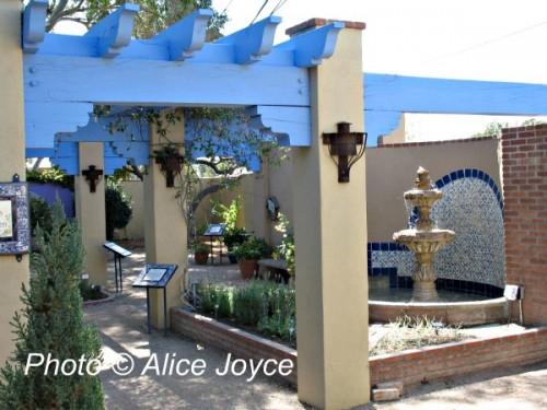 Tucson Botanical Gardens Alice 39 S Garden Travel Buzz