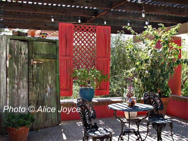 Elegant Tucson Botanical Patios Photo Alice Joyce