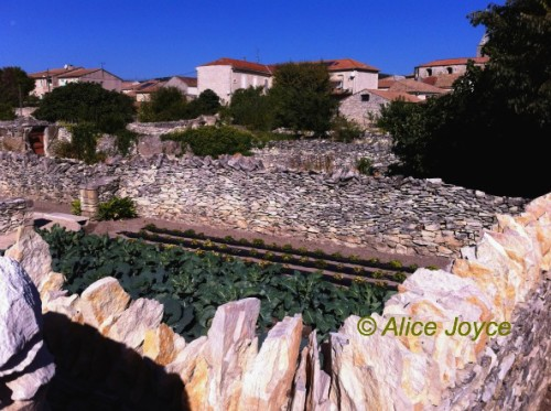 Tavel Potager Workers' Gardens © Alice Joyce