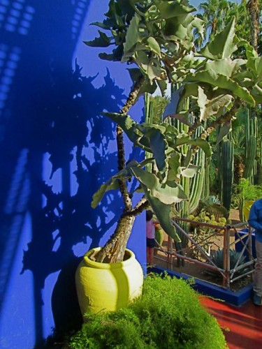 Majorelle Garden Yellow Planter .. Striking Play of Shadows